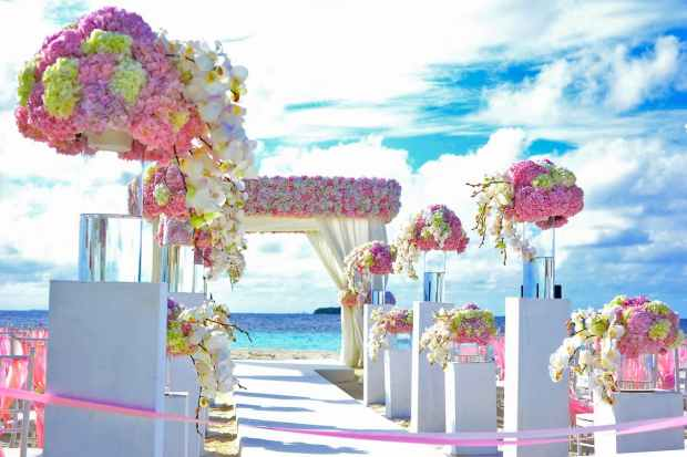 pexels-photo-169192-fairy tale wedding